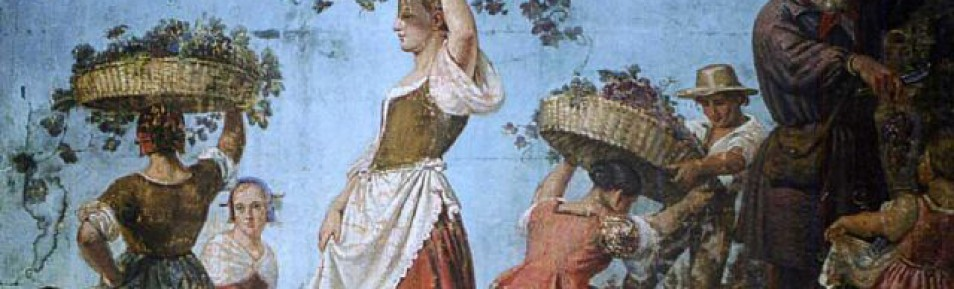 Ursprung des Weinbaus