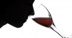 Wein richtig probieren
